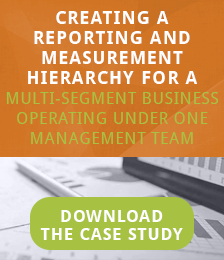 Case Study: Creating a reporting and measurement hierarchy for a multi-segment business operating under one management team