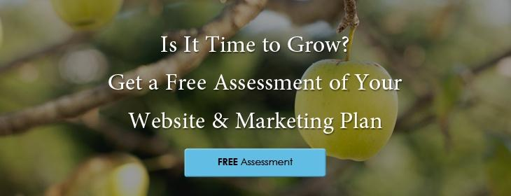 Paveya-Free-assessment-of-your-website-and-marketing-plan