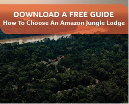 Free download: How to Choose a Jungle Download