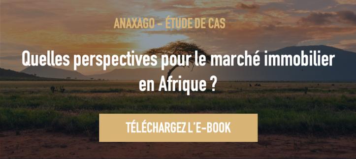 EBOOK AFRIQUE