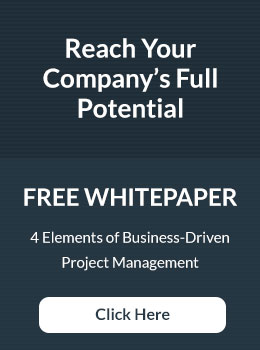 Reach Your Company's Full Potential Whitepaper