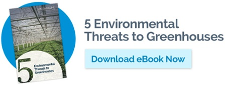 Download Greenhouse Threats eBook