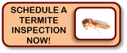 Schedule a termite inspection now
