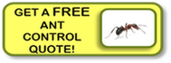 get a free ant control quote!