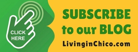 LivinginChico Blog Subscription