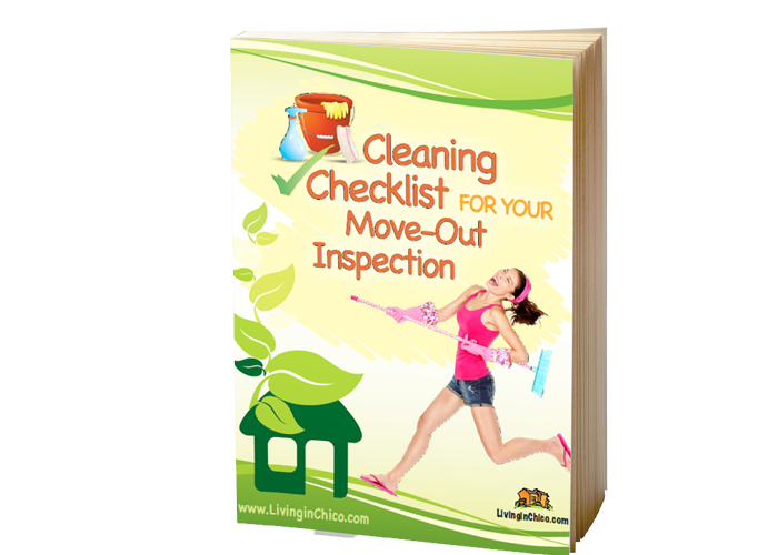 Cleaning Checklist eBook cover