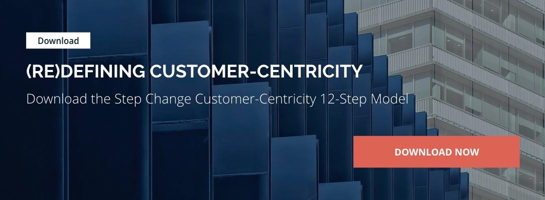 customer-centricity-model