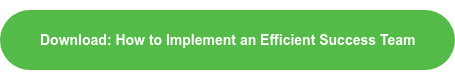 Download: How to Implement an Efficient Success Team