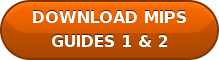 DOWNLOAD MIPS GUIDES 1 & 2