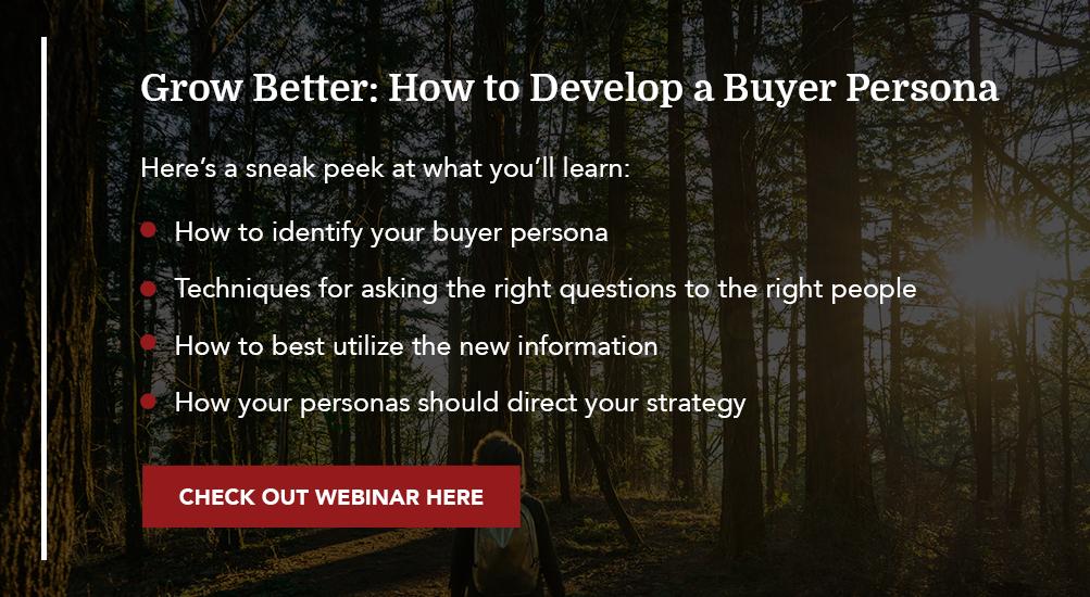 Grow Better: How to develop buyer personas