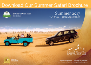 Download our Summer Desert Safari Brochure