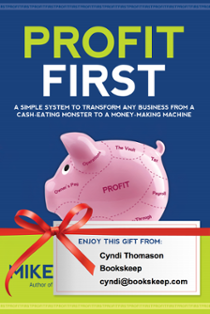 Profit First bookskeep Cyndi Thomason Mike Michalowicz