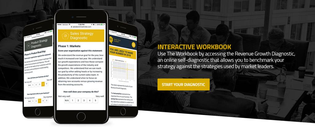 Interactive Workbook Revenue Growth Diagnostic