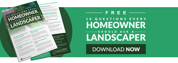 Are you asking your landscaper the right questions?