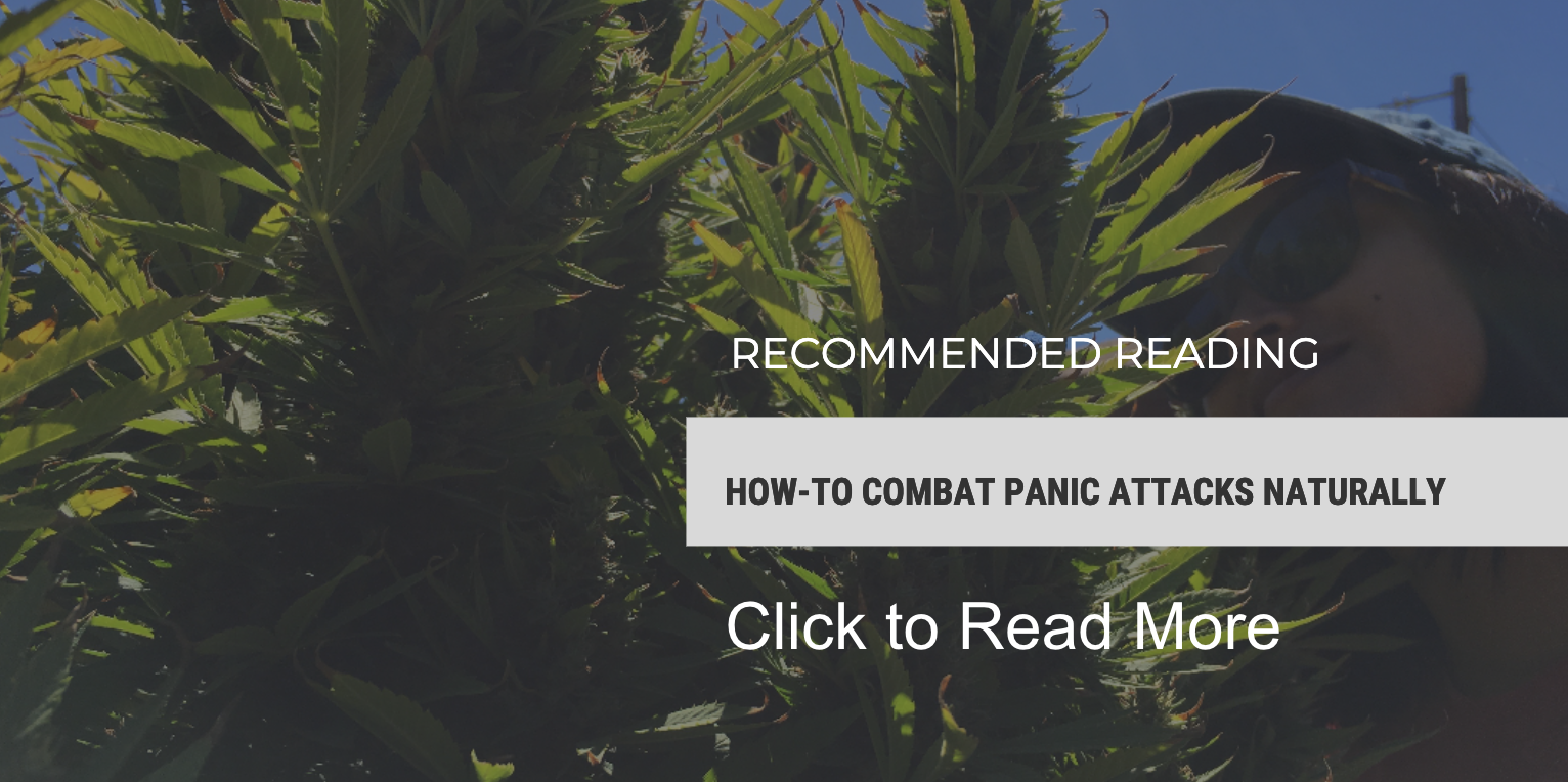 READ MORE: How-To Combat Panic Attacks Naturally