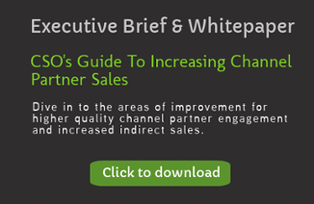 CSO's Guide To Increasing Channel Partner Sales