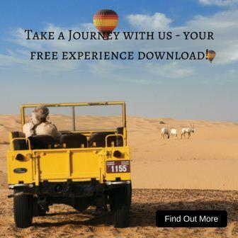 A hot Air Balloon Adventure free download