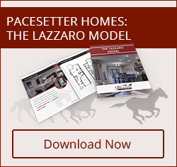 Click here to download your free copy of the Lazzaro Model brochure!