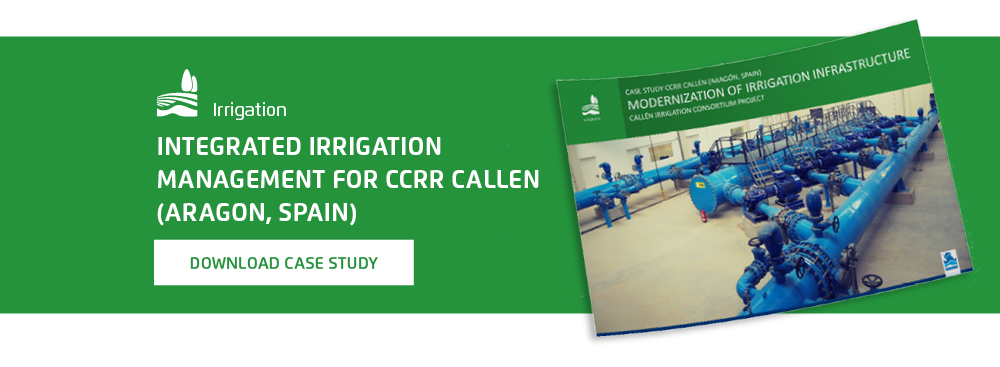 Integrated Irrigation Management for CCRR Callen (Aragon, Spain)