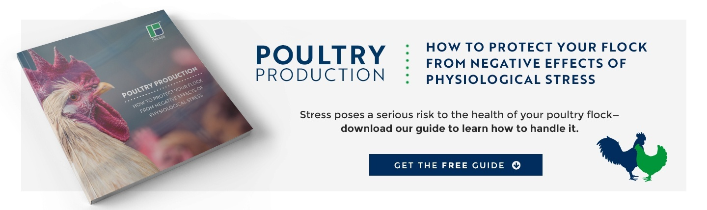 Pollstress poultry stress management guide