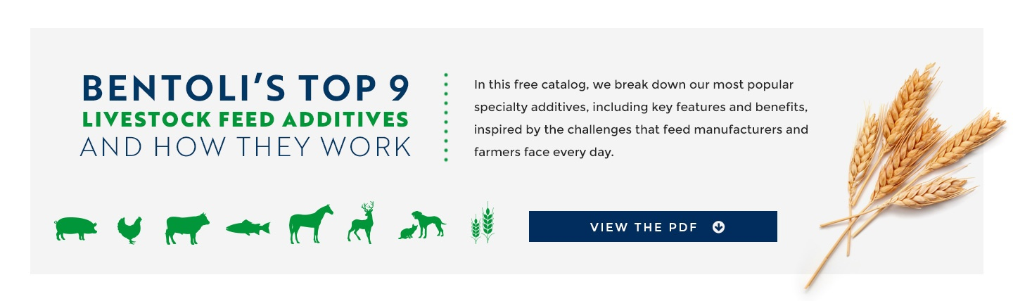 Bentoli's Top 17 Feed Additives and How They Work