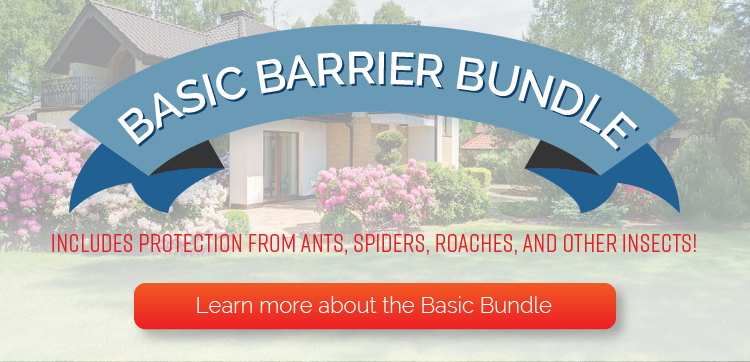 markle-basic-bundle