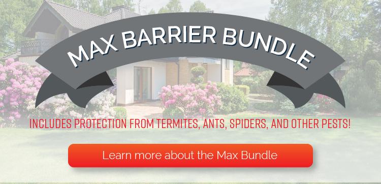 max-barrier-bundle