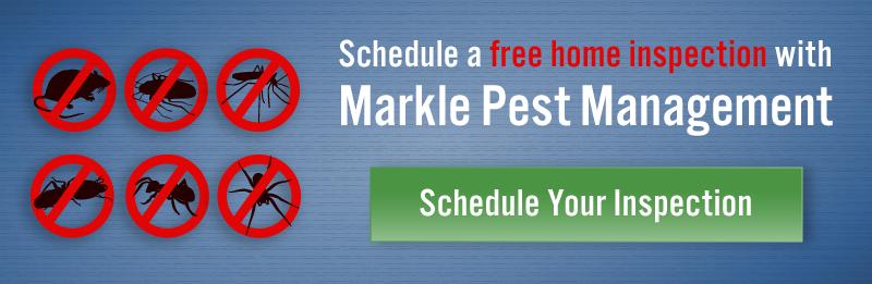 markle-free-inspection