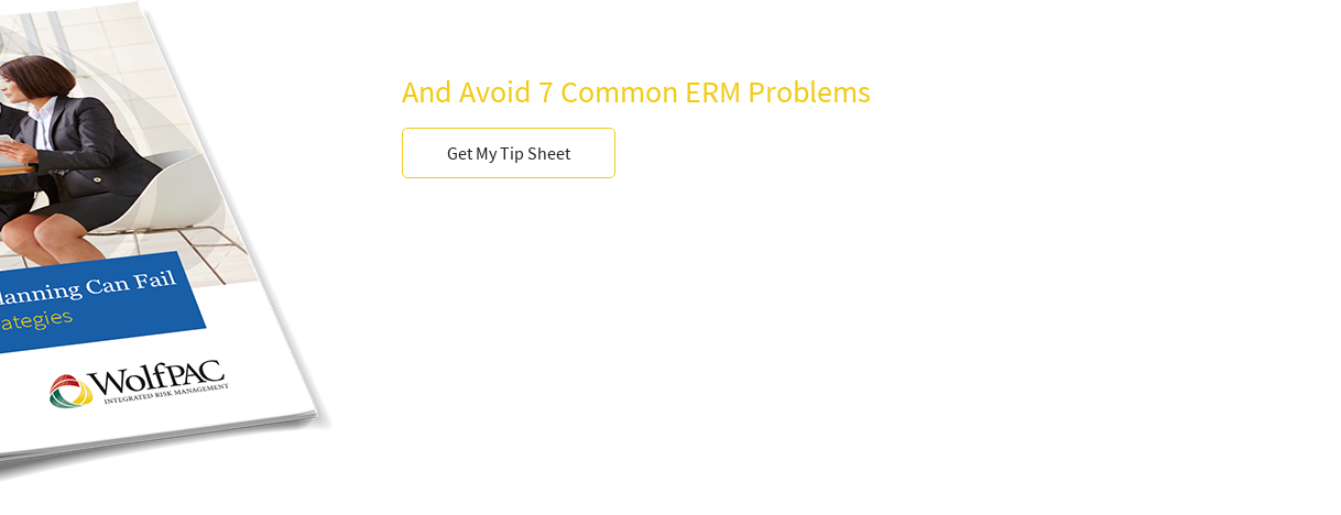 How To Build An Efficient Enterprise Risk Management PlanAnd Avoid 7 Common ERM  Problems Get My Tip Sheet