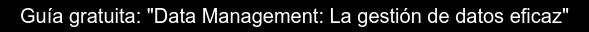 """Guía gratuita: """"Data Management: La gestión de datos eficaz"""""""