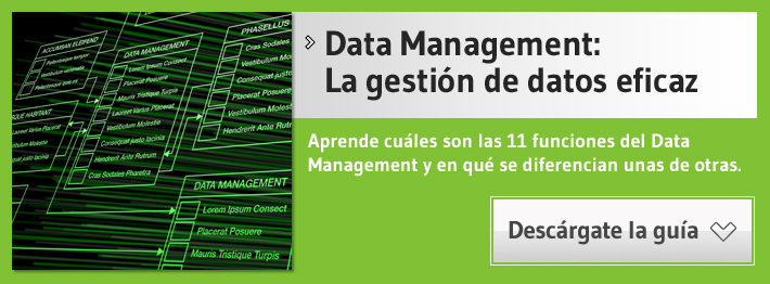 guia gratis sobre data management