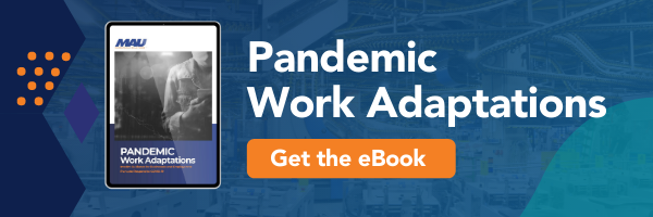 Ebook: Pandemic Work Adaptations