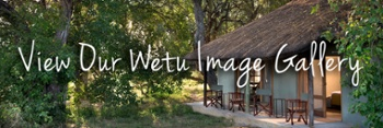 African Bush Camps_Khwai Bush Camp_Luxury Safaris in Botswana