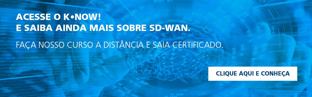 Saiba mais sobre SD-WAN