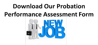 Probation Performance Assessment Form