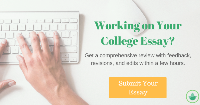 developing a personalized metaphor for your applications submit your essay for review