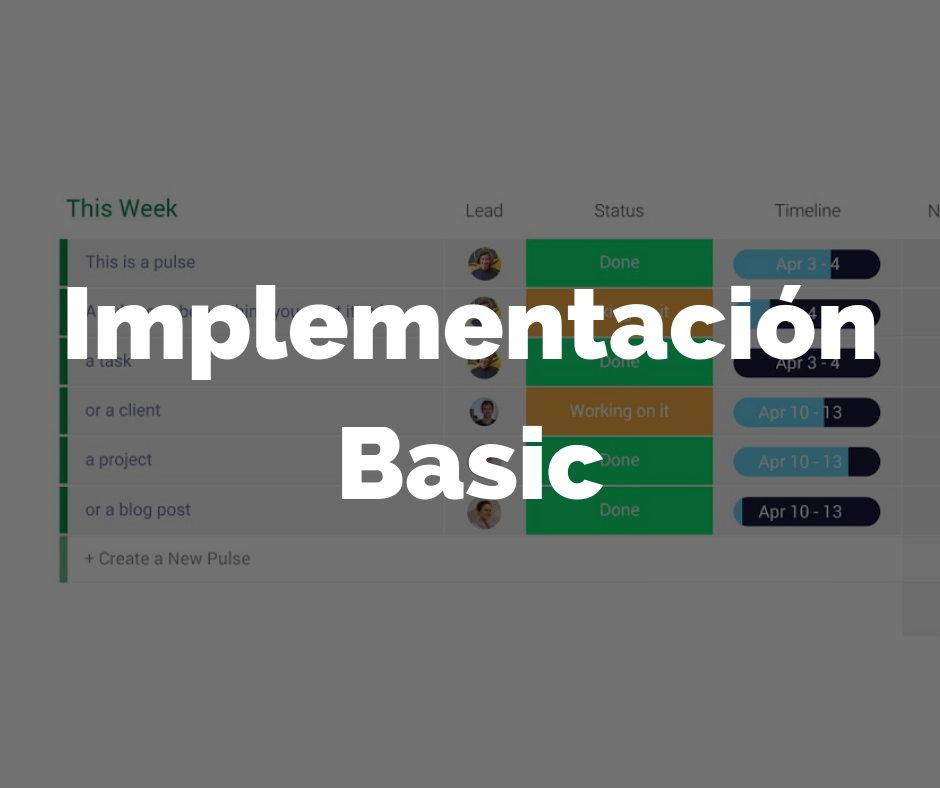 Implementacion Basic
