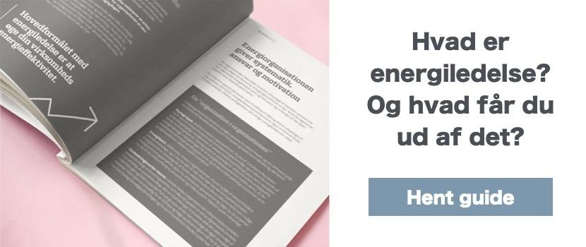 Hent guide til energiledelse