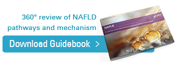 Download your Guidebook on NAFLD and NASH