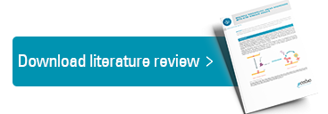Download your literature review here