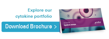Download our cytokine portfolio brochure