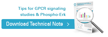 Download our Key success tips to study GPCR signaling using the HTRF® Advanced phospho-ERK1/2 kit application note