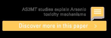 Read scientific paper: AS3MT studies explain Arsenic toxicity mechanisms
