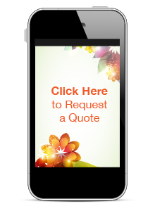 Request a quote for text donations and mobile pledges