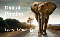 Digital Printing Big and Wild