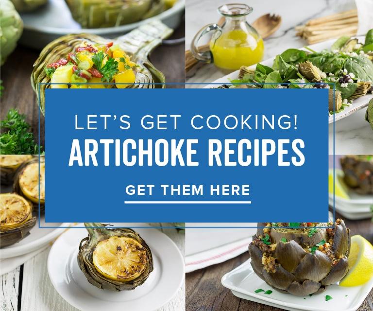 Artichoke Recipes Link