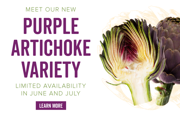 Meet Our New Purple Artichoke Variety - Limited Availability in June and July