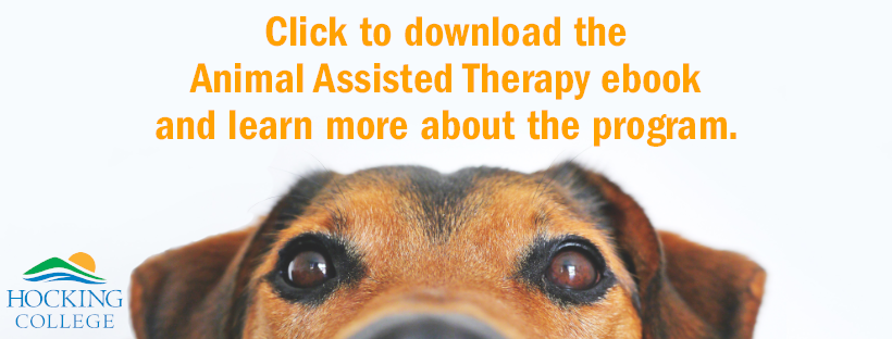 "dog looking at camera text that reads ""Click to download the animal assisted therapy ebook and learn more about the program."""