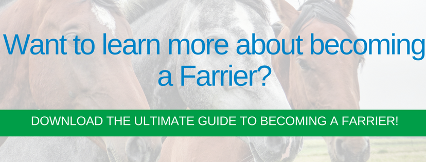 become a farrier