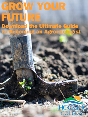 Grow your future. Download the ultimate guide to becoming an agroecologist.